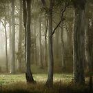 misty by ozzzywoman