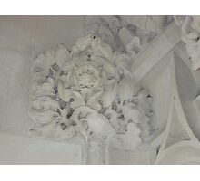 Tudor Rose In Plaster Detail, The Supreme Court, London Photographic Print