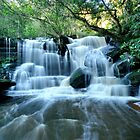 Somersby Falls 1 by Ian Berry