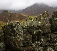 Dry stone wall, Cumbria, England by Mark Howells-Mead