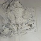 Thistle In Plaster Detail, Supreme Court, London by MagsWilliamson