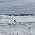 Gone Surfing by Susan Moss