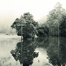 flood reflections by ozzzywoman