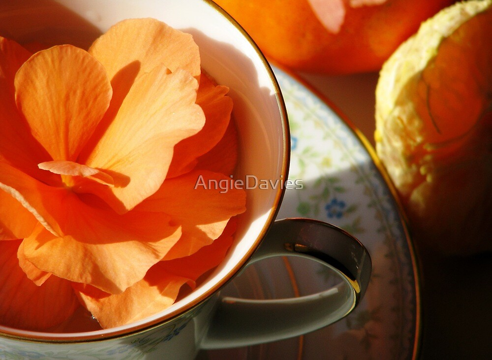 Tangerine Dreams by AngieDavies