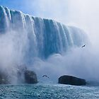 Niagara, Power and Beauty by Paul Weston