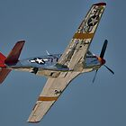 "P-51C Mustang ""INA The Macon Belle"" In Flight by Mark Kopczewski"