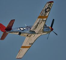 """P-51C Mustang """"INA The Macon Belle"""" In Flight by Pirate77"""