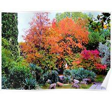 Colourful autumn landscape Poster