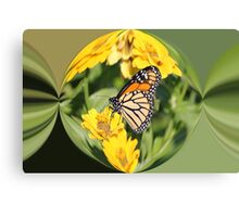 Monarch Paper Weight  Canvas Print