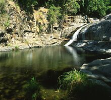 Cedar Creek Falls ∞ QLD, Australia by Jason Asher