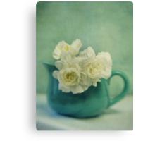 carnations in a jar Canvas Print
