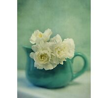 carnations in a jar Photographic Print
