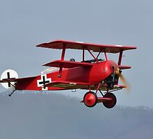 Fokker Triplane at Omaka by Barry Culling