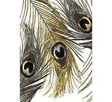 Gold and Silver Peacock Feathers Photographic Print