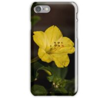 Four O'Clock in the Cold iPhone Case/Skin