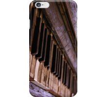 Panio iPhone Case/Skin