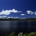 Lake Burbury Tasmania by Noel Elliot