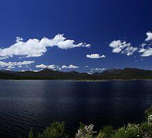 Lake Burbury Tasmania by Noel Elliot