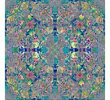11_27_11_6_12 Photographic Print