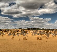 The Pinnacles, Cervantes, Western Australia #3 by Elaine Teague