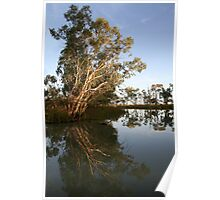 Refections on a Lake 4 Poster