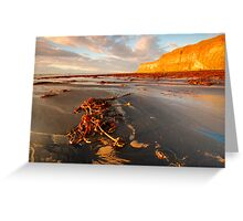 Huntsman Cliff, Saltburn-by-the Sea, Cleveland Greeting Card
