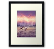 In Search of Solace Framed Print
