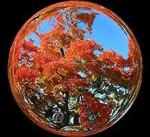 WeatherDon2.com Art 61 by dge357