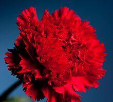 Red Dawn by Britman