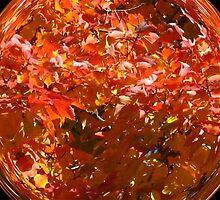 WeatherDon2.com Art 71 by dge357