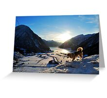 Storm on Lindesvoi Greeting Card