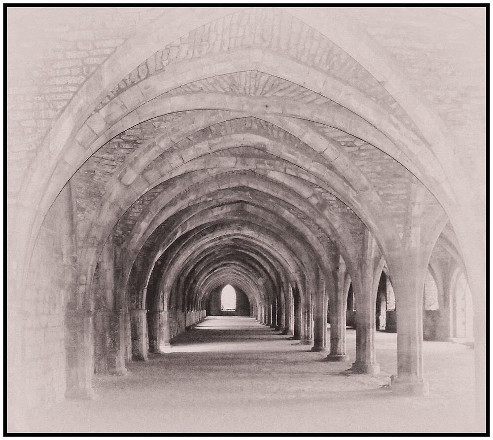 Fountains Abbey Cellarium by Peter Ackers