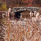 The Stone Bridge at Hopedale Pond  by John  Kapusta