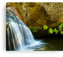Viola Falls, Kings Canyon National Park, California Canvas Print