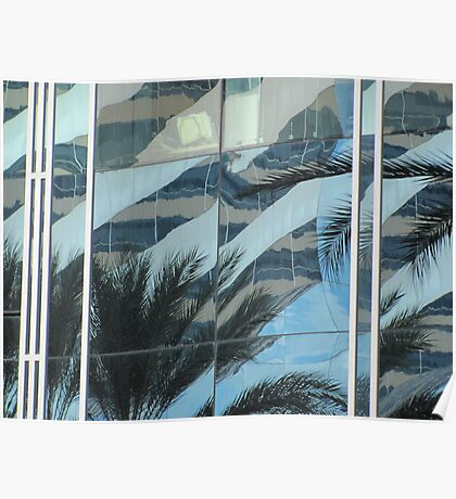 Palms in windows Poster
