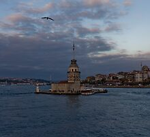 Maiden's Tower, Istanbul, Turkey  by Tanergungor