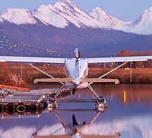 Chugach Mountains and a Beaver by Tim Grams