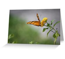 The Golden Light of the Sun Greeting Card