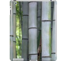 Bamboo Details iPad Case/Skin