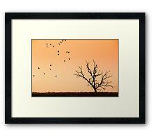 The nature Framed Print