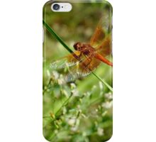 Red Dragon Fly iPhone Case/Skin