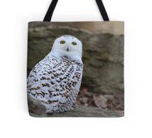 Mellow Yellows - Snowy Owl Tote Bag