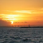 Queen Isabella Causeway by Ray Chiarello