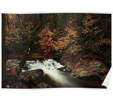 Laurel Creek Cascades Poster