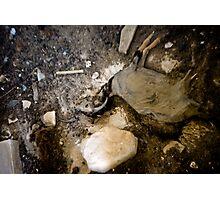 Corpse Photographic Print