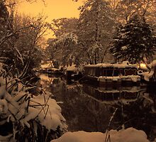 Wey Cold and Late by James Deeley