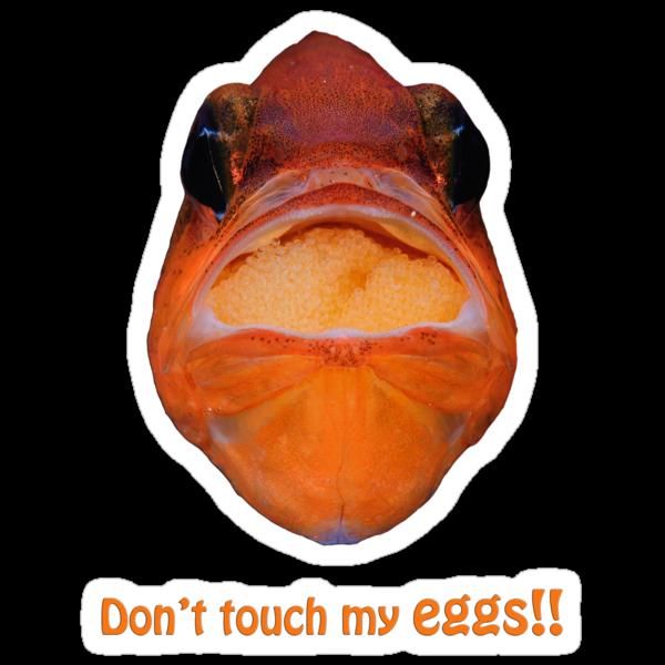 Don't touch my eggs! by Esteban  Toré