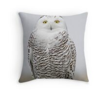 Southbound Snowy Throw Pillow
