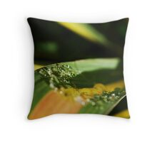 Ribbon Tears II Throw Pillow
