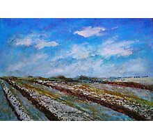 The Fields in the November Morning Photographic Print
